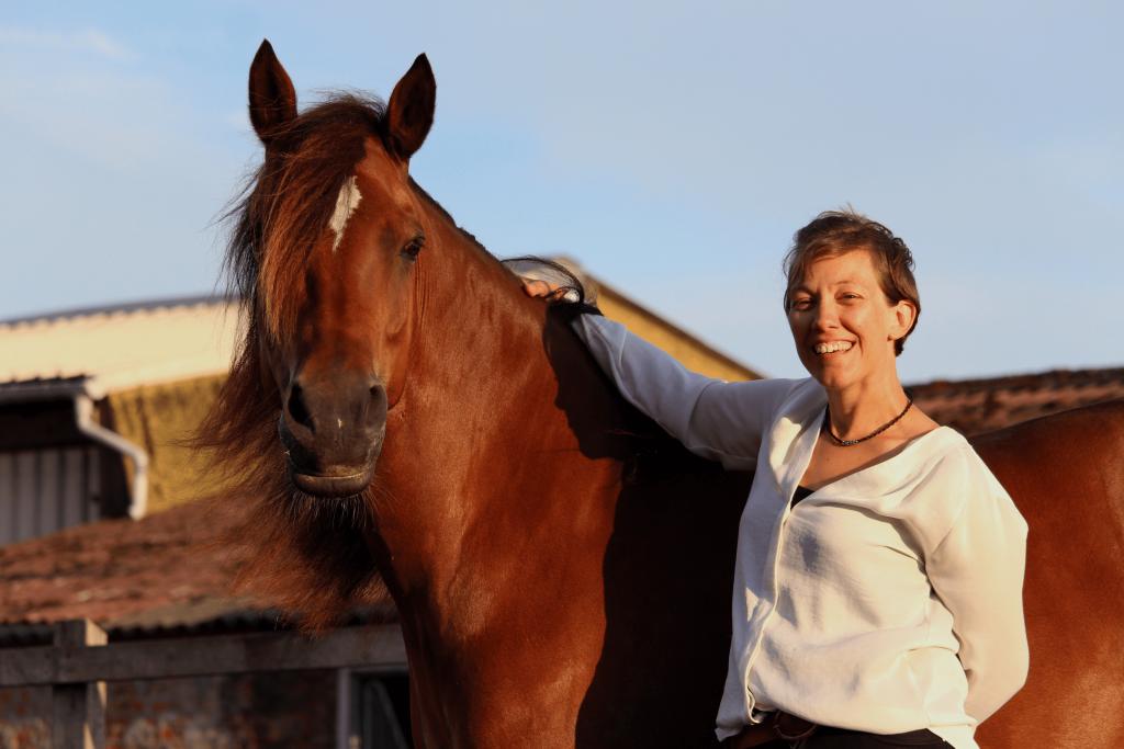 horseflow coaching paardencoaching